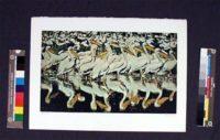 Fran Bull –  Stork Pond – Lithograph