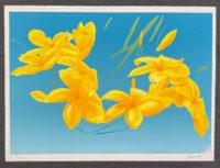 Peter Baum 1980 Signed Limited Edition Silkscreen Flowers